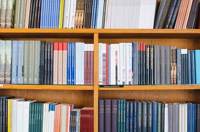 bookshelf, self publishing